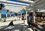 Retracted En-Fold® canopy